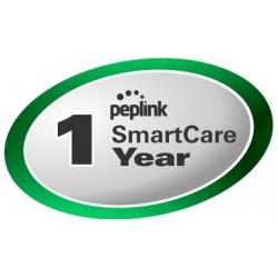 Peplink Extended Warranty การต่ออายุประกันสำหรับสินค้า Peplink แบบรายปี